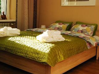 1 bedroom Bed and Breakfast with Internet Access in Warsaw - Warsaw vacation rentals