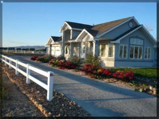 Nice 4 bedroom Montrose House with Microwave - Montrose vacation rentals