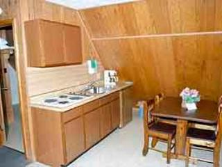 Calm Waters Resort Unit E - Image 1 - Branson - rentals
