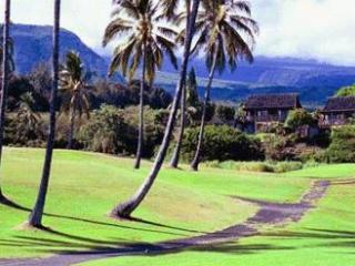 Hawaii Big Island Black San Beach - Naalehu vacation rentals