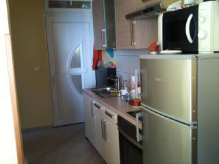 New apartment near the see in Istria - Labin vacation rentals