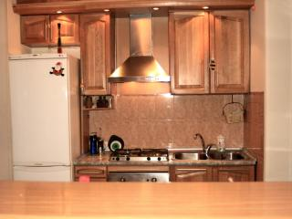 Apartment for rent in the center of Yerevan - Yerevan vacation rentals