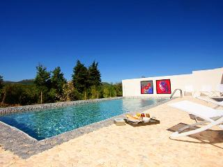 BEAUTIFUL HOUSE DECORATED BY AN ARTIST - Argens-Minervois vacation rentals