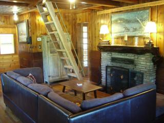 Rustic Cabin in Quaint Lake Village - Green Valley Lake vacation rentals