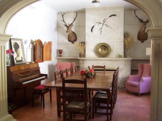 Elegant Villa in the Heart of La Mancha - Alcala del Jucar vacation rentals