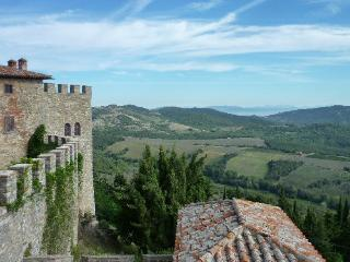 Restored olive mill of Montegiove Castle, Leccino - Montegabbione vacation rentals