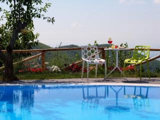 Charming Villa with Internet Access and Hot Tub - Cicerale vacation rentals