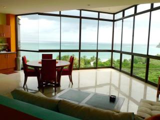 Casa de los Monos Locos Spectacular Ocean Views - Guanacaste vacation rentals