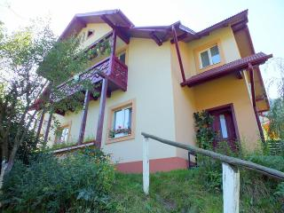 Comfortable Bed and Breakfast with Internet Access and Garden - Suceava vacation rentals