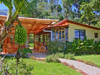 Perfect House with Deck and Internet Access - Santa Cruz La Laguna vacation rentals