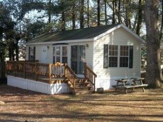 1 bedroom Cottage with Deck in Hendersonville - Hendersonville vacation rentals
