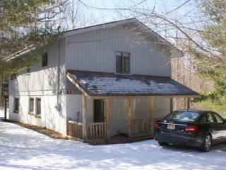 TONS OF SNOW!  Feb and March Wknds AVAIL 2 - Windham vacation rentals