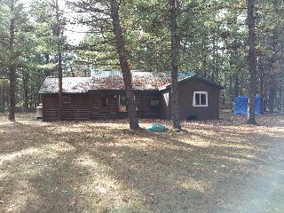 1 bedroom Cabin with Kettle in Baldwin - Baldwin vacation rentals