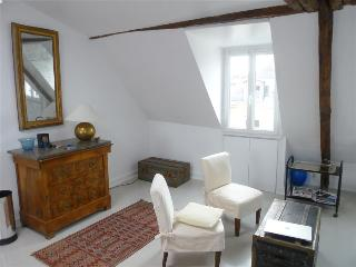 """Charme"" in the Marais: The Real Paris in Appealing 1 Bedroom for Two People - Paris vacation rentals"