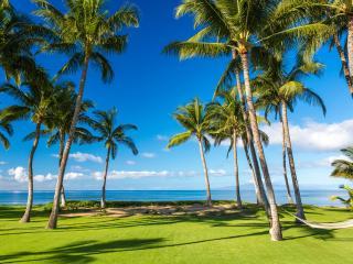 Mango Surf Beach Front Villa - Kihei vacation rentals