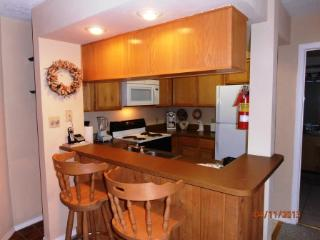 Romantic 1 bedroom Apartment in Angel Fire - Angel Fire vacation rentals