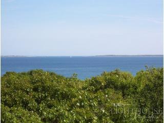 Blueberry Hill - Edgartown vacation rentals