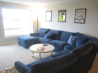 Luxury oceanview condo with great views.  Walk to beach & lighthouse! - Westport vacation rentals