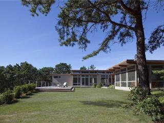 Great Island Beauty w/Pool! - WRLANE - Wellfleet vacation rentals