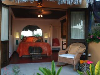 Nice Bed and Breakfast with Internet Access and Garden - Tamazula vacation rentals