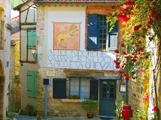 Medieval  historic 1600 old B&B - Saint-Antonin Noble Val vacation rentals