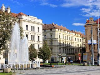 Prague Center 2+1 Aparment - Prague vacation rentals