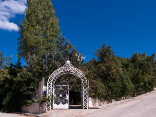 Athens Villa...Luxury Villa at your service - Kalyvia Thorikou vacation rentals