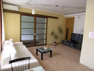 2 room de luxe apt Bali with jakuzzi on Kreschatik - Kiev vacation rentals