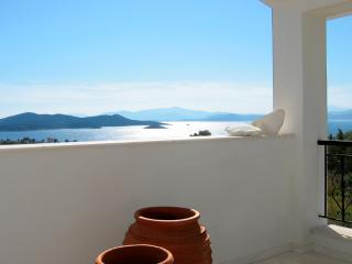 Sunny 3 bedroom Nea Styra Villa with Internet Access - Nea Styra vacation rentals