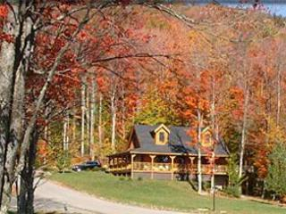 11 Acre Lake  -  North Lake Cabin - Canaan Valley vacation rentals