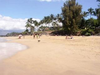 Hale Ili Ili #D Oceanfront  on Kamaole Beach #1 Steps from the beach! - Kihei vacation rentals