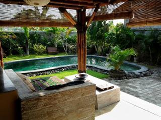 Fantastic Villa near to all important places quiet - Seminyak vacation rentals