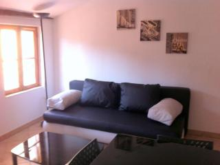 1BD apartment in heart of old town Nice - Riviera - Nice vacation rentals