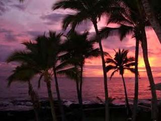 Kona Reef D33 Ocean Front At It's Best! - Kailua-Kona vacation rentals