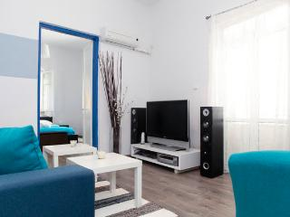 Beach Apt 50 Ft From Sea Line - Tel Aviv vacation rentals