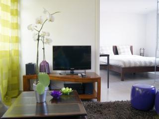 Superb Cannes 1 Bedroom Apartment with Air Conditioning - Renovated 2013 - Cannes vacation rentals