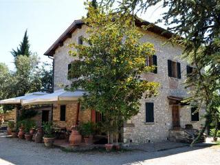 "Podere Campriano family winery ""Pilu Apartment"" - Greve in Chianti vacation rentals"
