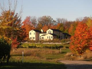 Grey Hare Inn Vineyard B & B - Traverse City vacation rentals