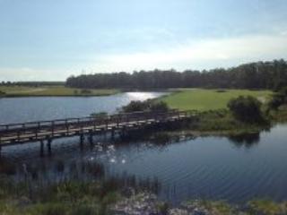 View from lanai 1 - Naples, Florida 11th fairway TPC condo..awaits! - Naples - rentals