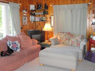 Nice Cottage with Deck and Internet Access - Chetek vacation rentals