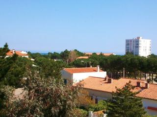 Beautiful 1 bedroom Argeles-sur-Mer Apartment with Central Heating - Argeles-sur-Mer vacation rentals