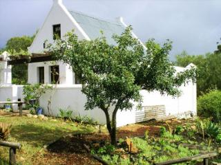 Rhebokskraal olive farm Cottages - Montagu vacation rentals