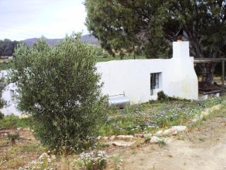 Rhebokskraal olive farm Cottages - McGregor vacation rentals