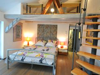 The MORELLS in the heart of Alsace - for 4 to 6 people - Erstein vacation rentals