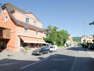 Chez Svanette Bio B&B with 7 cozy living-bed rooms - Dornach vacation rentals