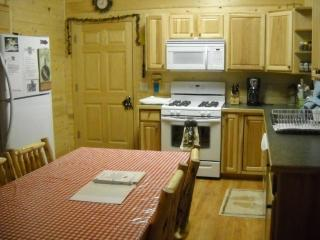 Cozy Sterling vacation Cabin with Dishwasher - Sterling vacation rentals