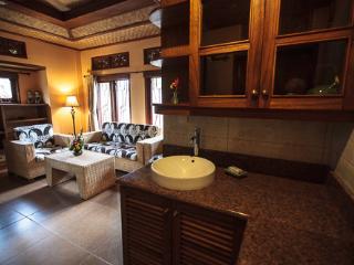Murni's Houses, Ubud, Bali - Sawo Apt 1 - Ubud vacation rentals