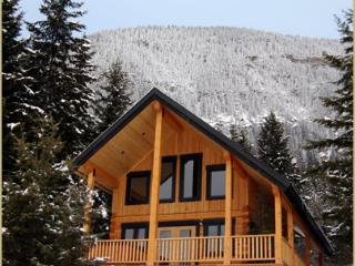 Deer Lodge - luxury 2 bedroom with mountain views - Golden vacation rentals