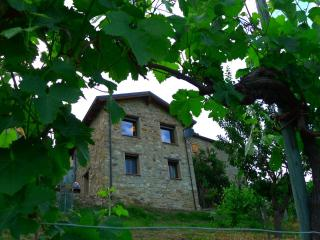 Lovely 1-bed barn conversion in mountains (2-3ppl) - Toano vacation rentals