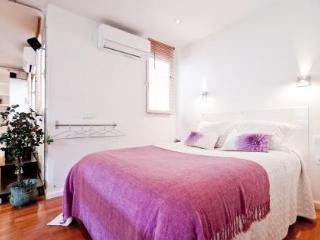 Charming 1 bedroom Madrid Apartment with Internet Access - Madrid vacation rentals